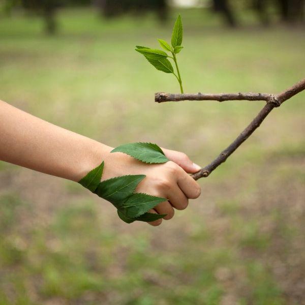 Les bienfaits de la nature sur le stress