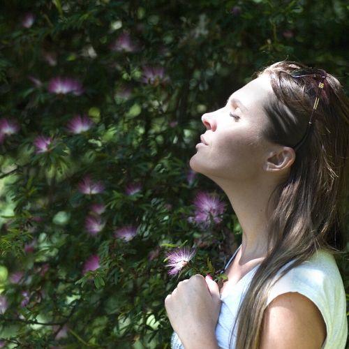 stage yoga aromatherapie huiles essentielles dans les cevennes