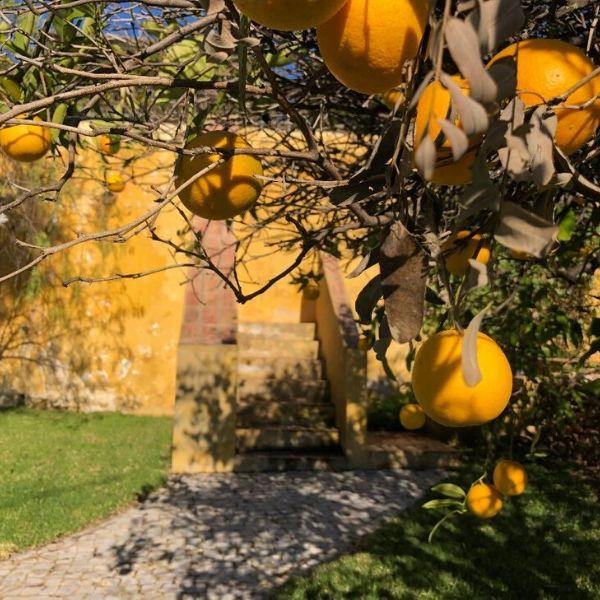 visiter l'algarve au portugal