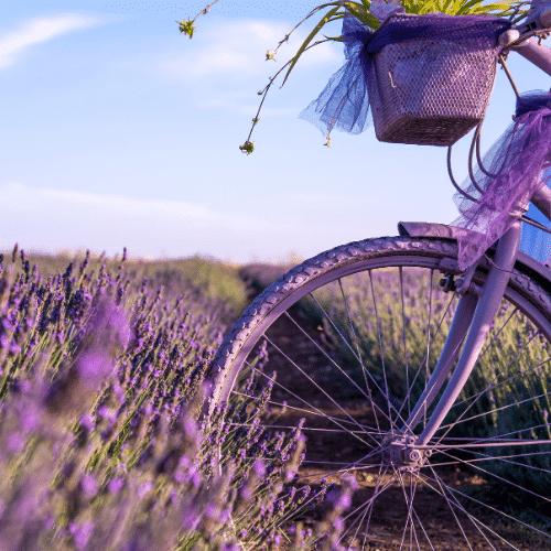 Weekend dans le Lubéron vélo en provence