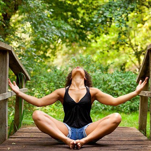 Weekend Sylvothérapie dans les Alpes-Maritimes avec Qi Gong et Yoga