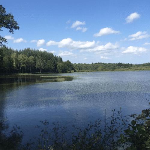 weekend yoga nature france sud